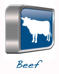 Beef Product Line - Dawn International