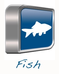 Fish Product Line - Dawn International